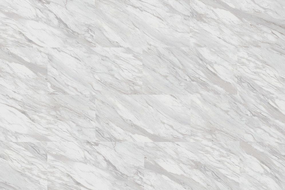 TM7419 Carrara.jpg