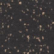 2924.jpg