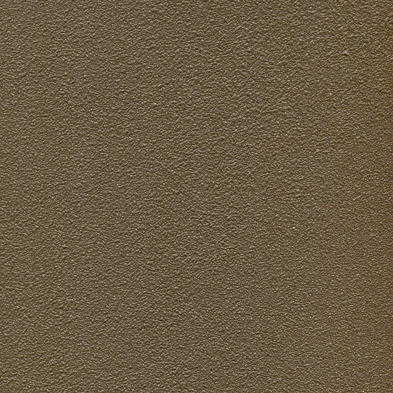 AT ProTEC TM3007 Leather.jpg