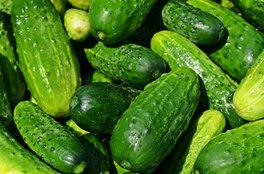 cucumbers-849269_1920.jpg