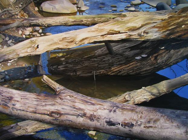 Malletts Creek - Winter Breaks