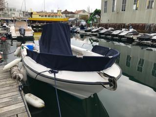Boston whaler custom covers