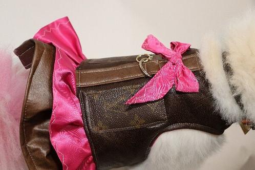 11a8499e72f0 Louis Vuitton inspired harness dress