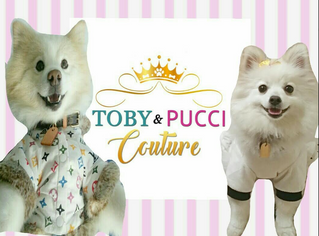 New!!! Toby & Pucci Couture Collection On Sale Now