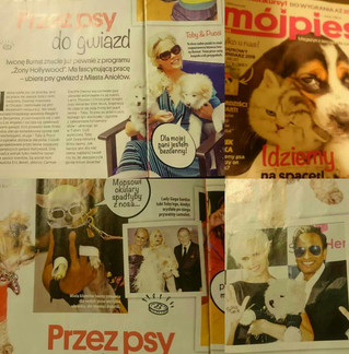 Polish Dog Magazine (Mój pies) 2015