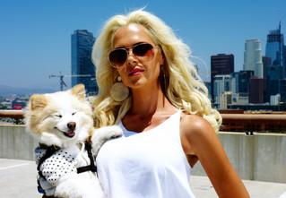 Zony Hollywood season 3 February 13 on TVN.Pl