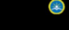 DNL logo.png