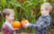 Cottage Montessori Events