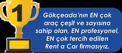 Gökçeada Rent a Car başarılıyız.png