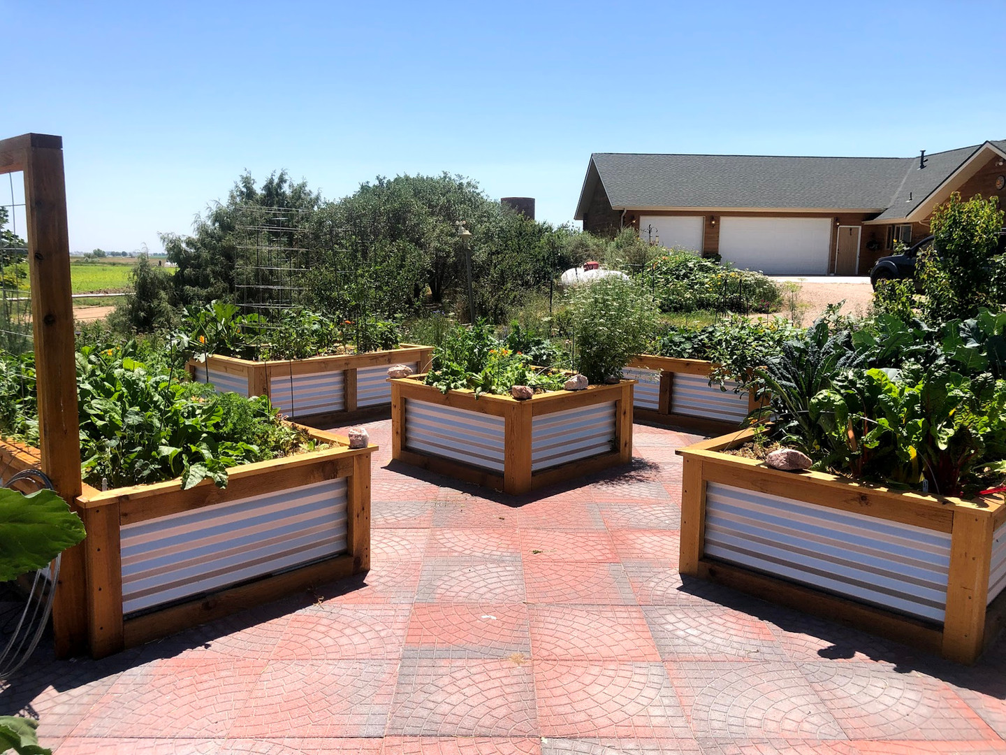 fort collins garden installation raised beds, planting plan and coaching