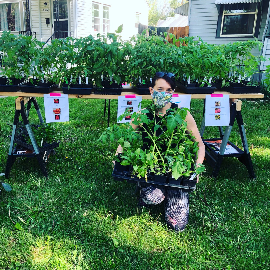 fort collins plant sale