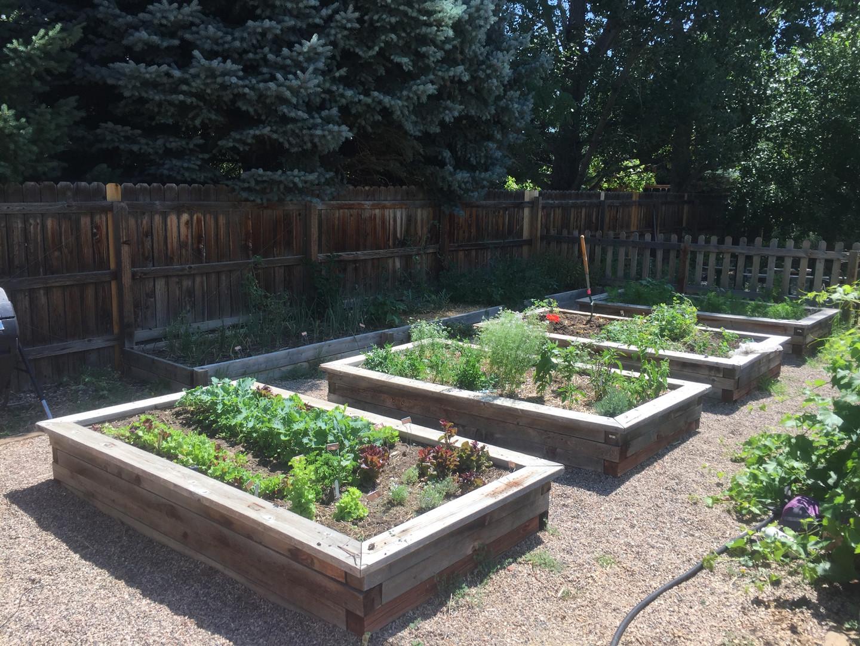 raised bed garden maintenance