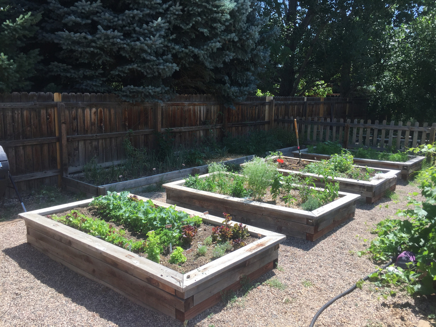 raised bed garden maintenance