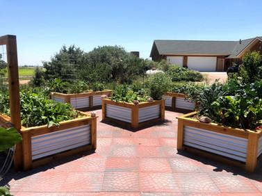 raised bed garden by TMTG
