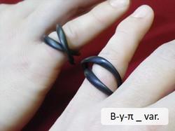 B-y-π _ var.