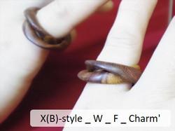 X(B)-style _ W _ F _ Charm'