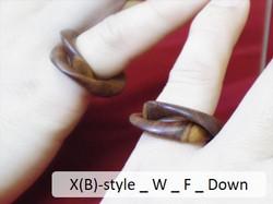 X(B)-style _ W _ F _ Down