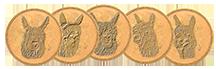 suricoins.png
