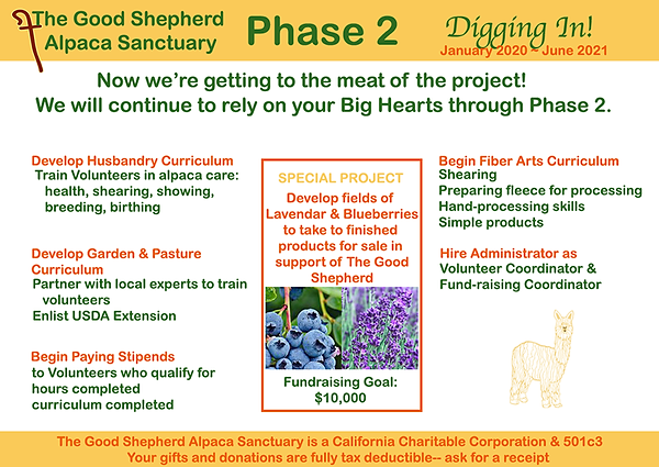 PHASE2.png