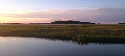 The Great Marsh, Essex, MA