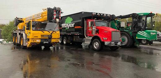 Mayer Tree Service in Essex, MA