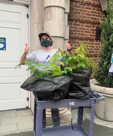 Spotlight on Tree Planting Enthusiast Ryan Davis