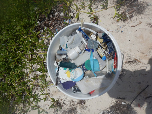 Belize's Plastic Plague