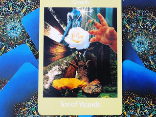 Tarot Card of the Week: Sagittarius ♐️