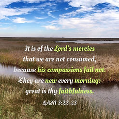 great faithfulness.jpg
