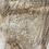 Thumbnail: Silver Maple -SM80