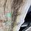 Thumbnail: Silver Maple -SM58