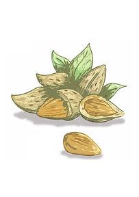 Whole Almonds