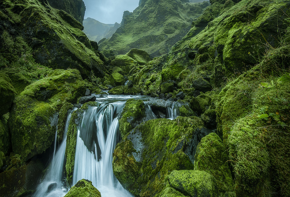 The Land of Elves and Trolls