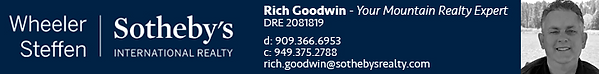 sothebys web banner - rich (new).png