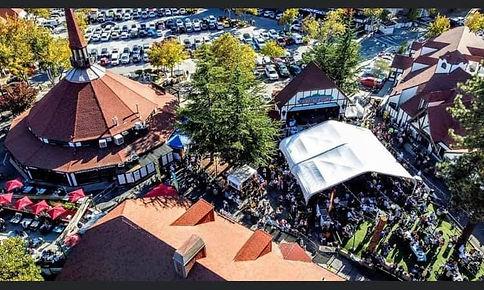 Oktoberfest Aerial.jpg