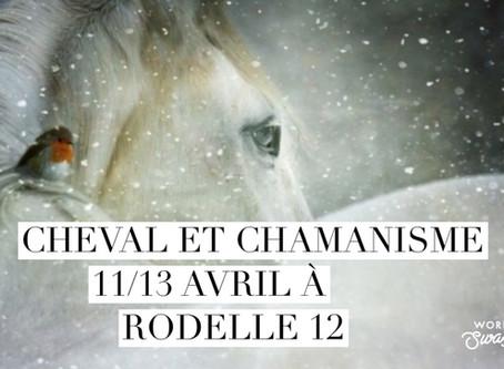 Cheval et chamanisme