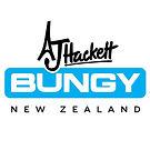 AJ HACKETT BUNGY.jpg