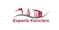 logo CEF expert.jpg