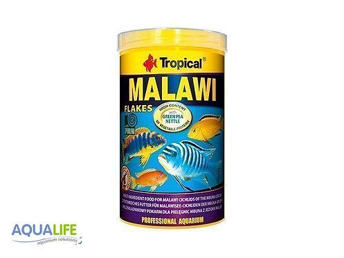 Tropical Malawi x 50grs