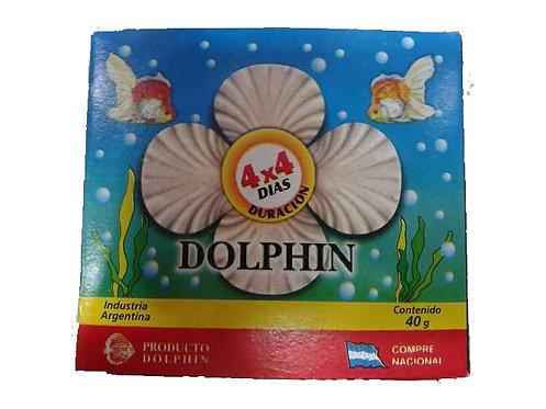 Dolphin vacaciones de 4 dias