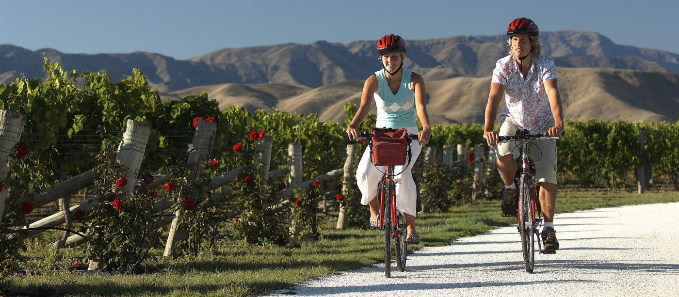 wine bike tour