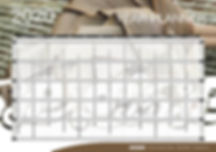 MAORI ZOOM WALL PLANNER 20203.jpg
