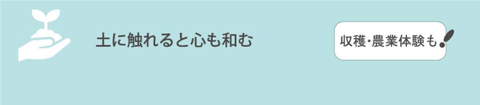 タイトルトップ3.jpg