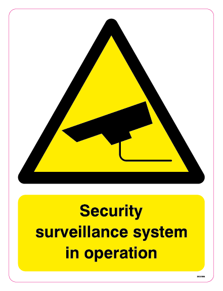 Security surveillance system in operation