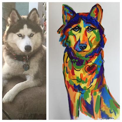 Custom Husky Portrait