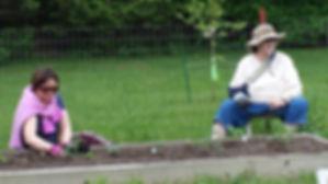garden c.jpg