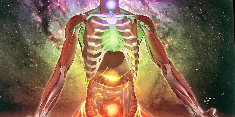 Formation en NeuroYoga® et Anatomie