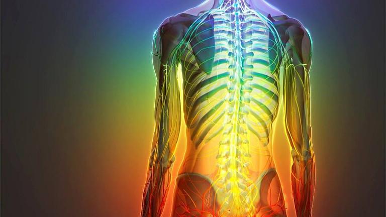 Gym Yoga et  NeuroYoga®