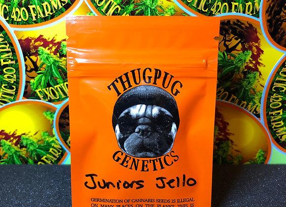 Juniors Jello