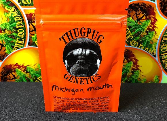 Michigan Mouth